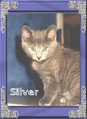 http://debgram-ivil.tripod.com/sitebuildercontent/sitebuilderpictures/silver2.jpg